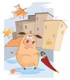 A cute Pig and Windy Autumn Day Cartoon Stock Photos