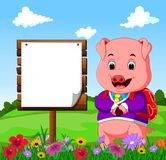 Cute pig with wood sign cartoon Stock Photography