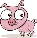 Cute piggy Royalty Free Stock Photos