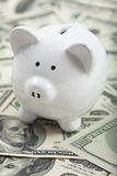 Cute Piggy Bank on heaps of cash Stock Images