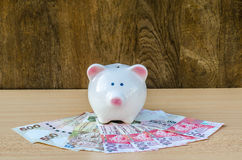 Cute piggy bank on a stack of cash. Stock Images