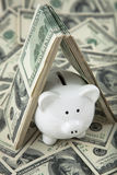 Cute Piggy Bank under shelter of cash Stock Photos