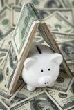 Cute Piggy Bank under shelter of cash stock photos