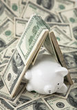 Cute Piggy Bank under shelter of cash Stock Photography