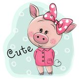 Cute Piggy girl isolated on a blue background Royalty Free Stock Photo