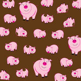Cute piggy Royalty Free Stock Photo