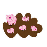 Cute piggy Royalty Free Stock Photography