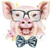 Watercolor portrait of pig with bow-tie and glasses. Cute piggy. Pig for T-shirt graphics. Watercolor pink pig with bow-tie and glasses stock illustration