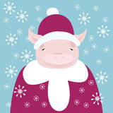Cute piglet dressed as Santa stock photos