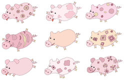 Cute piglets. Stock Photography
