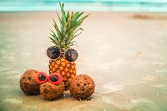 Cute Pineapple and Coconuts Wearing Sunglasses Relaxing By The O stock photo