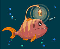 Cute pink Angler fish underwater with his small fish Stock Photography