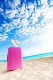 Cute pink baggage bag on the beach Royalty Free Stock Image