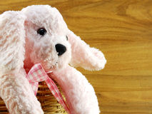 Cute pink dog doll in the basket Stock Photo