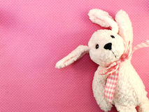 Cute pink dog doll with pink polka dot background. Pink dog doll with pink polka dot background Royalty Free Stock Photography