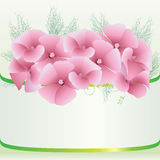 Cute pink floral background Royalty Free Stock Image