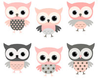Cute pink and grey cartoon owls vector set Stock Image