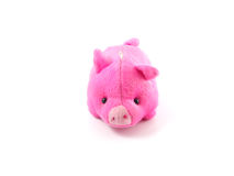 Cute pink pig doll Stock Images