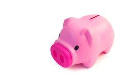 Cute pink piggy bank  Stock Photography