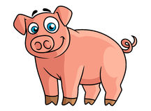 Cute pink piggy in cartoon style Royalty Free Stock Photo