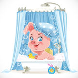 Cute pink piggy taking a bath with foam Stock Images