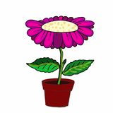Cute pink purple flower and pot illustration drawing and drawing illustration white background royalty free illustration