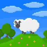 Cute pixel sheep is standing on a hill. Bright 8-bit vector illustration. Sheep, trees, sky, and clouds on background Stock Illustration