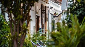 Cute place with restaurants, plants, trees stock photo