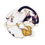 Cute Plaing Cat Stock Photography