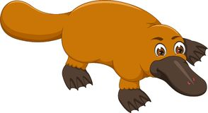 Cute platypus cartoon crawl with smile. Pict of cute platypus cartoon crawl with smile Royalty Free Stock Images