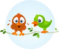 Cute playful  birds. Brown orange and green birds standing on the branch Royalty Free Stock Photography