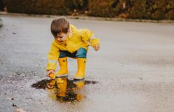Cute playful little baby boy in bright yellow raincoat and rubber boots playing with rubber ducks in small puddle at rainy spring. Day on wet street road stock images