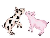 Cute Playful Piglet. Cartoon cute and cheerful piglet illustration on white Stock Photo