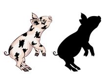 Cute Playful Piglet. Cartoon cute and cheerful piglet illustration on white Royalty Free Stock Images