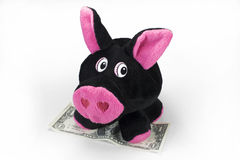 Cute plush toy piggy with a dollar Stock Images