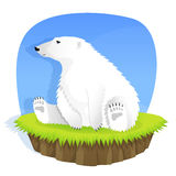 Cute polar bear Royalty Free Stock Photo
