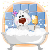 Cute Polar Bear Royalty Free Stock Photography