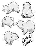 Cute polar bear. Flat hand drawn vector design. Cartoon illustration. royalty free stock images