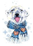 Cute polar bear in a knitted hat with snowflake watercolor background. royalty free stock photos