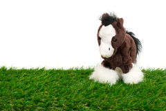 Cute pony doll Stock Images