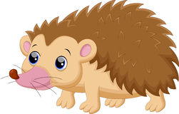 Cute porcupine cartoon. Illustration of Cute porcupine cartoon Royalty Free Stock Photos