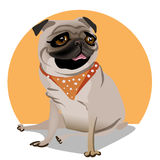 Cute portrait of a pug Royalty Free Stock Photography