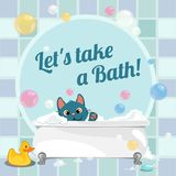 Cute poster with a swim in the bath a kitten. Vector cartoon close-up illustration. Cute poster with a swim in the bath a kitten. Vector cartoon close-up royalty free illustration