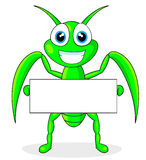 Cute praying mantis holding a blank sign Royalty Free Stock Image