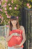 Cute pregnant young mother in airy red whit dress posing enjoying summer day close to red pink roses bush on fence holding her tum Royalty Free Stock Photos