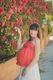 Cute pregnant young mother in airy red whit dress posing enjoying summer day close to red pink roses bush on fence holding her tum Stock Image