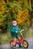 Cute preschool boy of three years riding bike in autumn forest Stock Photo