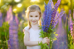Cute preschooler girl in blooming lupine field Stock Photography