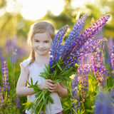 Cute preschooler girl in blooming lupine field. Cute little preschooler girl having fun in beautiful blooming lupine field at summer Royalty Free Stock Image