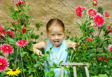 Cute preschooler girl portrait with natural flowers Royalty Free Stock Images
